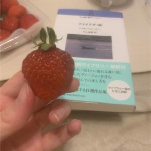 【本】苺とカーヴァー