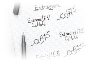 エストロゲン(ESTROGEN)とは…