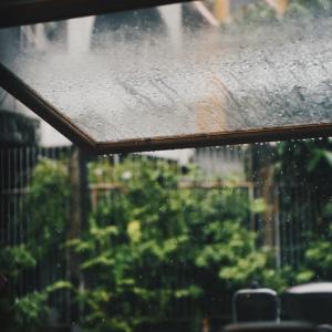 雨の日は盛大に言い訳して休んでしまおう