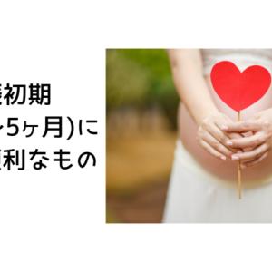 妊娠初期(妊娠2か月~5か月)にあると便利なもの