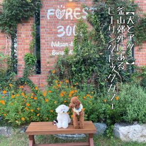 【犬とアタシ】ドッグカフェ♪フォレスト3002