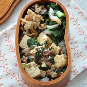 おかず3品のっけるだけ!豆腐とひき肉の煮込みがメインのお弁当