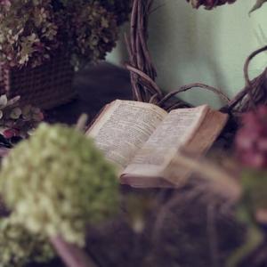 もう一度読みたい本 『一人で生きる勇気』ドロシー・ギルマン
