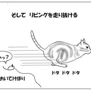 おむすび編22. 狩る猫の不可解な行動 最後の獲物は何?