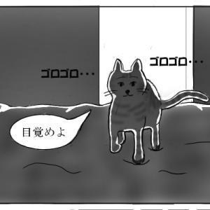 おむすび編27. 寝相の悪い私が愛猫を押しつぶす不安