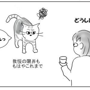 おむすび編31. 私の歌う歌に、猫は逃げ出す