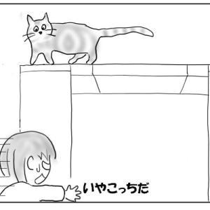 猫は乗らないでほしい場所に飛び乗る おむすび編56