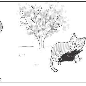 春と猫と幸せと おむすび編62