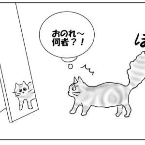 鏡に映る姿は猫じゃない おむすび編64