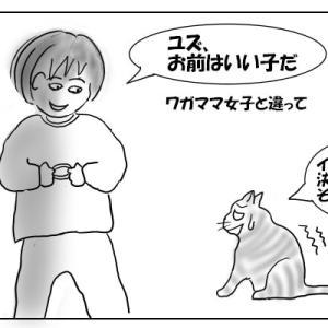 猫グッズいろいろ