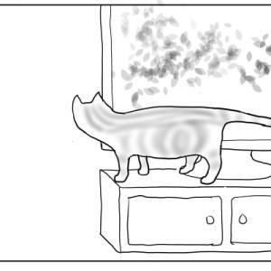 気分が沈みがちな時、私が観る猫のDVD おむすび編74
