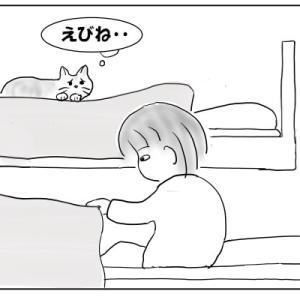 猫と水入らず おむすび編96