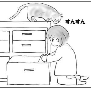 ブロガーバトンと、猫にお願いしたいこと おむすび編106