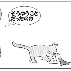猫と暮らすのは知恵比べ