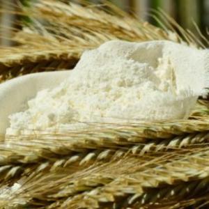 強力粉の代用品は何が使える?薄力粉・片栗粉・米粉を使うとどうなるか検証!