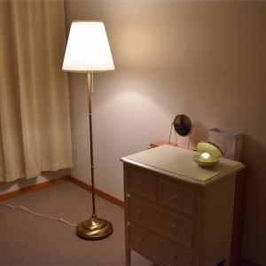 おしゃれな部屋に住むぞ計画!ミニマリスト女子IKEA購入品