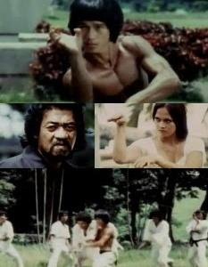 BRUCE'S NINJA SECRET (1988)「見所ポイント紹介」