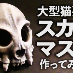 大型ネコ科のスカルマスクを作ってみよう【05】