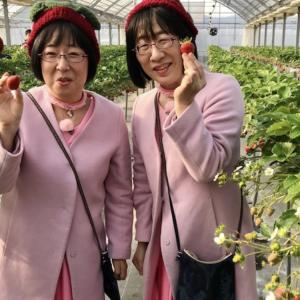 大好きな阿佐ヶ谷姉妹さんが倉敷美観地区へ。。です