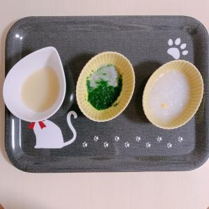 離乳食39日目 卵黄