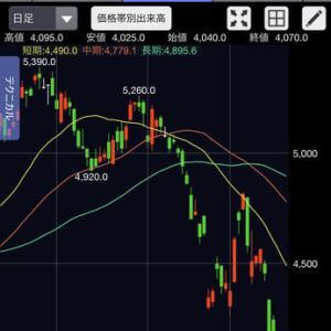 株式投資ブログ2月25日