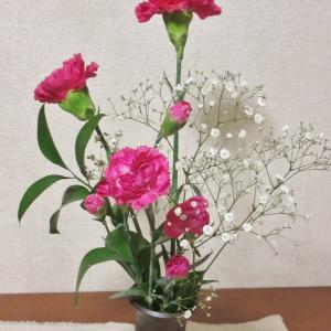 不思議な植物ルスカス 葉っぱの真ん中に花が咲く
