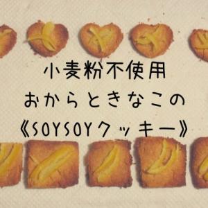 【手作りおやつ】小麦粉不使用・おからときなこの《SOYSOYクッキー》