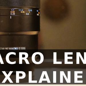 マクロレンズ、最短撮影距離と最大撮影倍率の話