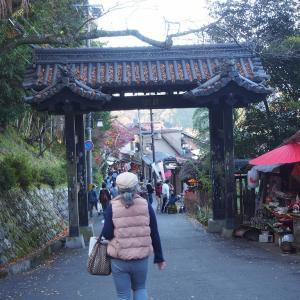 近鉄フリーきっぷの旅 Vol.8 金峯山寺と吉水神社