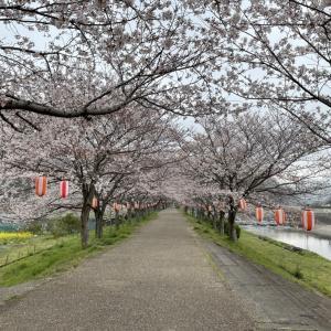 「山の辺の道コース」を歩く VOL.2 大和川~金屋の石仏