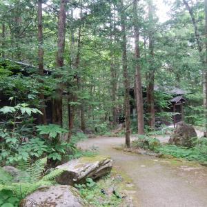 ひらゆの森 温泉付きコテージ宿泊