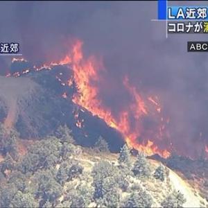 火災原因・場所・発生はいつから?米・ロスで大規模な山火事発生!