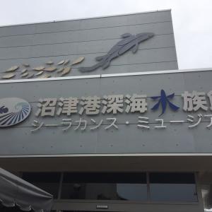 伊豆修善寺温泉の旅 1日目①(2019年6月)
