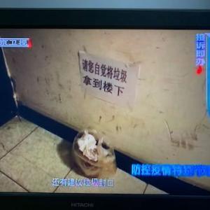 ゴミ分別+露店は儲けてる人はトンでもなく儲かってるin中国