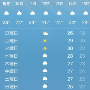 【砂浴 福岡】梅雨入り前の砂浴ベストシーズンです♪