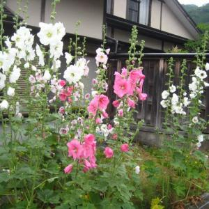 牛乳屋食堂と芦ノ牧温泉駅(2)