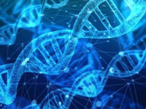 【腸内細菌シリーズ⑧】腸内細菌1200万個の遺伝子