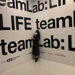 大人気「team Lab:LIFE」東大門DDPへ行ってきました
