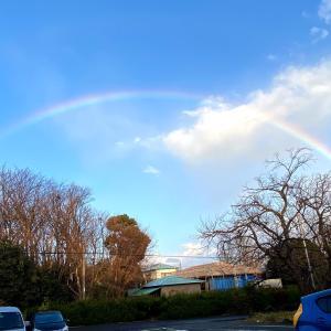 お散歩の後の虹