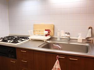 キッチンの大掃除*クエン酸と重曹が大活躍