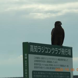★2020年10月05日屋外RC活動(1/8)