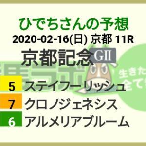 競馬初心者によるマイルールと、京都記念結果