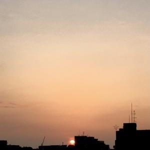 毎朝昇る太陽さまを拝む【食は運命を左右する】