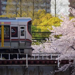 Sakura-Station.2021