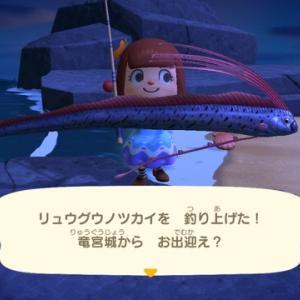 夜の魚釣り