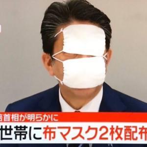 マスク2枚で日本が守れるのか?
