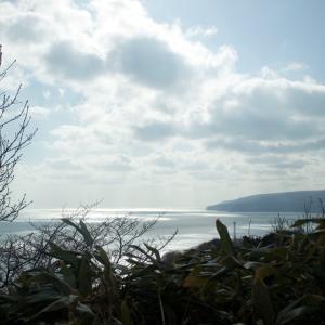 今日の奥尻島の海!