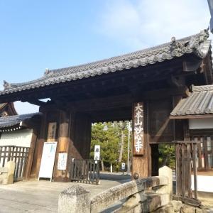 【京都】『妙心寺』に行ってきました。京都観光  京都旅行  国内旅行