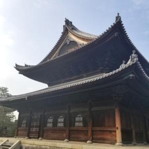 【京都】【京の冬の旅】『妙心寺』に行ってきました。法堂  明智風呂  京都観光 京都旅行  国内旅行
