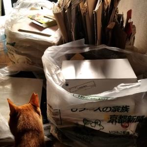 【断捨離】【おうち時間】やっと古紙回収に出せてスッキリした‼  主婦日記